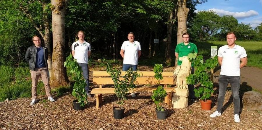 District league club plants trees to combat economic impact of COVID-19